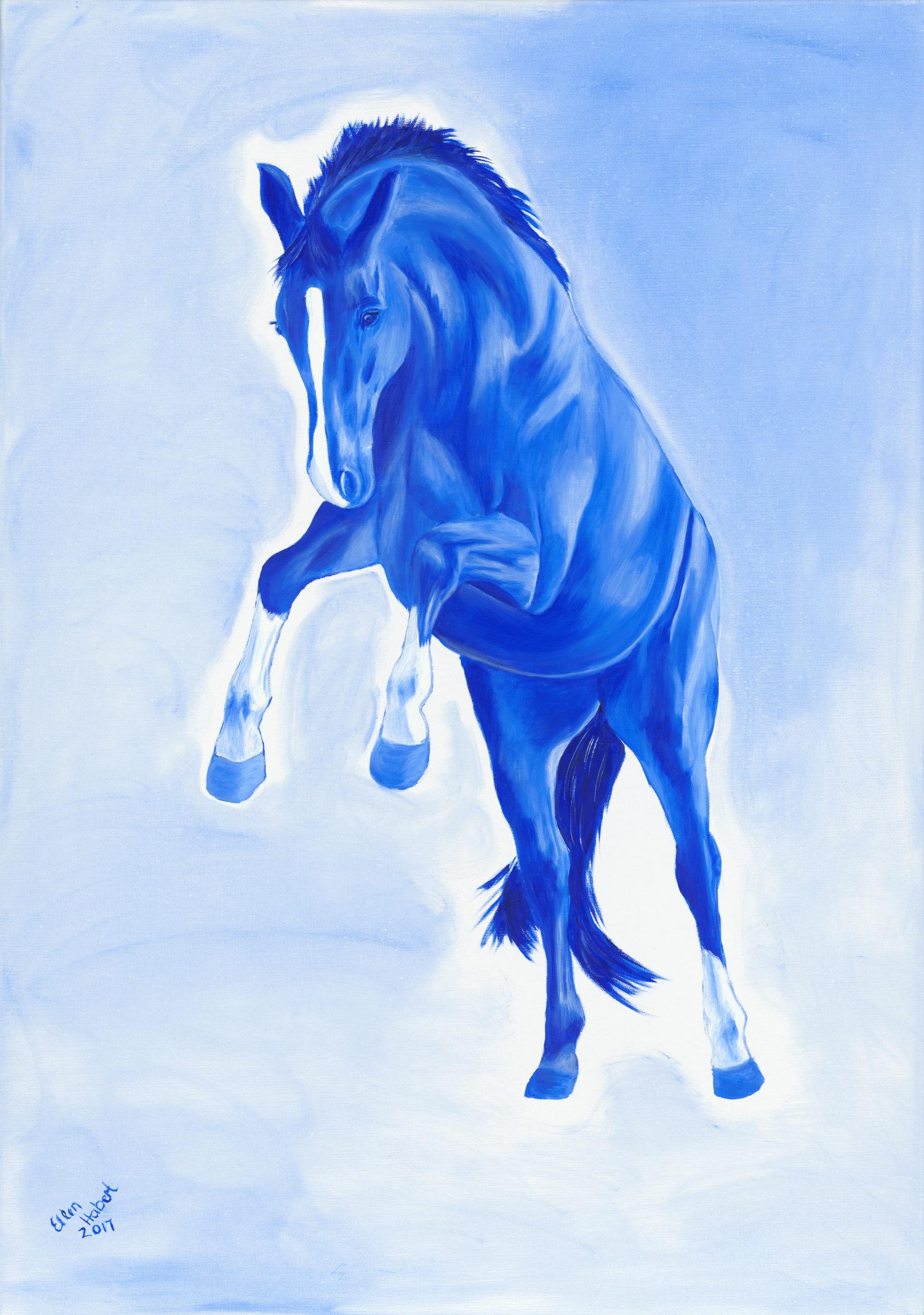 Trakehner surrealistisch, Pferde in Farbe